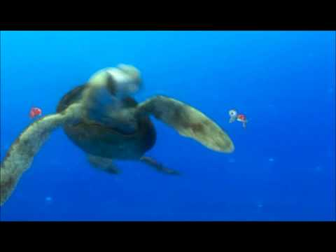 Squirt - Finding Nemo ...totally... video