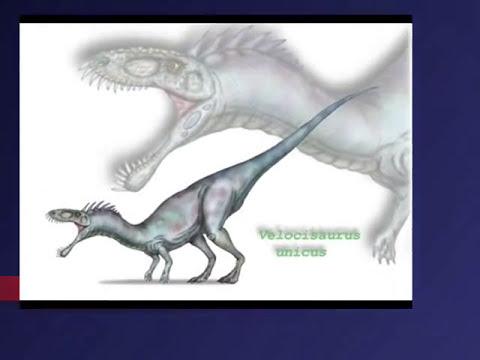 tecnica 64 tepeji del rio 4.-dinosaurios carnivoros de la A-Z.wmv