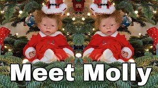 Molly - Talking Reborn Baby Doll! nlovewithreborns2011
