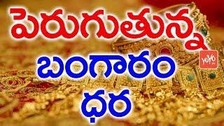 పెరుగుతున్న బంగారం ధర | Gold Price in India | Gold Rates Increased in India