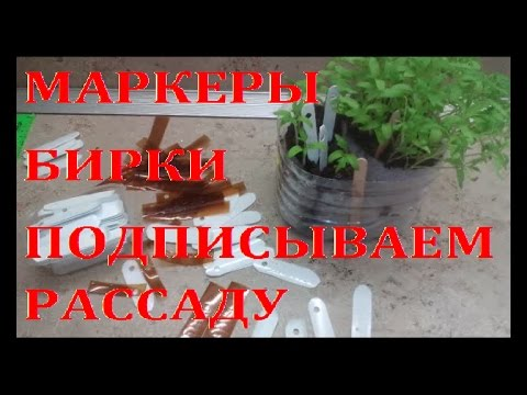 Маркеры для растений своими руками// Super and cheapest markers for seedlings