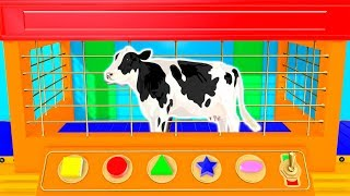 Learn Cow Colors for Kids | Learn Shapes and Colors | Animals Cow for Children