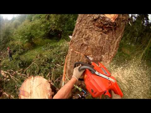 Husqvarna 3120 chainsaw - modified