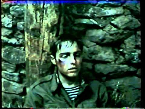 Шурави (1988 г.)