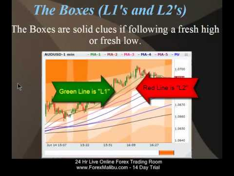 Forex fibonacci trading tutorial videos