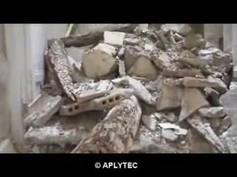 Tratamiento de Termitas con cebos para eliminar termitas