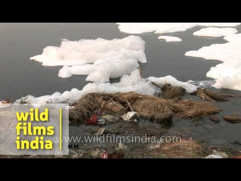 Clean Yamuna: a mission impossible?
