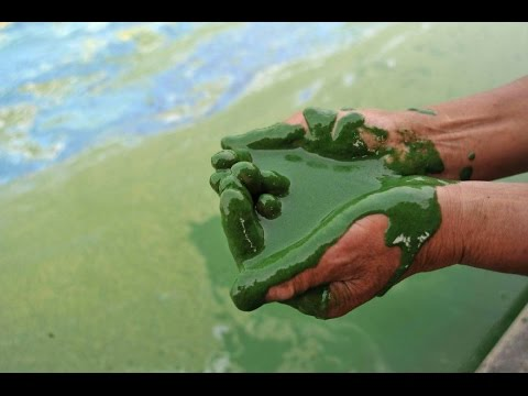 Disturbing & Scary Images Of Pollution In China