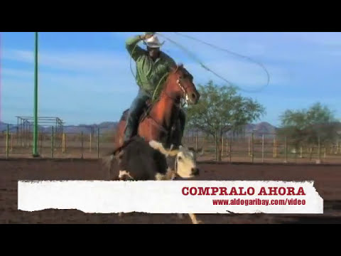 LAZOS VIDEO PARA APRENDER  (ROPING LEARN HOW TO)