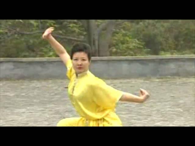 Wushu Chu Ji Chang Quan   初级长拳