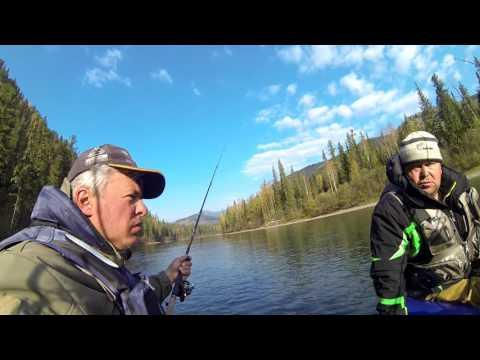 рыбалка на казыре красноярского края