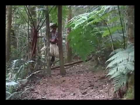 Indios Kariri Xoco - Brasil Music Videos
