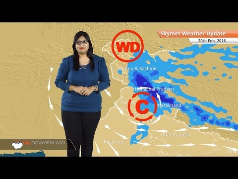 Weather Forecast for February 20: Snow in Jammu Kashmir and HP, rain in Punjab, Haryana, Delhi