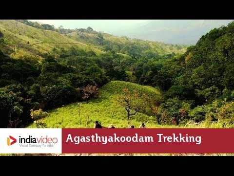 Agasthyakoodam Trekking - Trivandrum | India Video