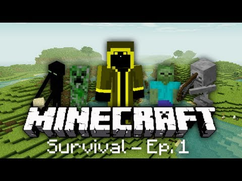 Minecraft Survival Let