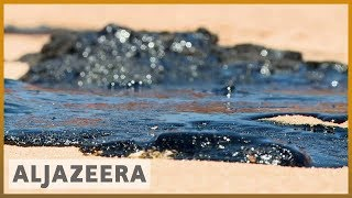 Brazil oil spill:  2,000km of northern beaches contaminated