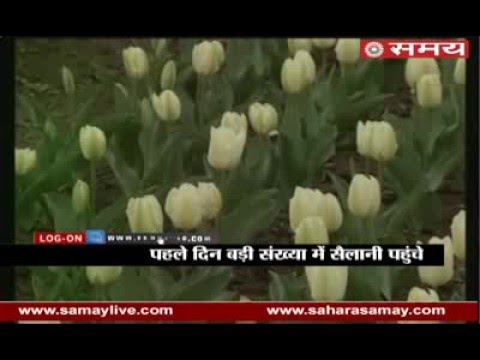 Srinagar's tulip garden open to tourists