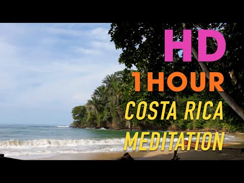 Punta Uva Beach in Costa Rica, 1 HOUR Relaxation Video HD, waves & nature by Puerto Viejo & Cahuita