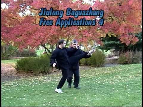Baguazhang Jiulong:  Application 4 Image 1