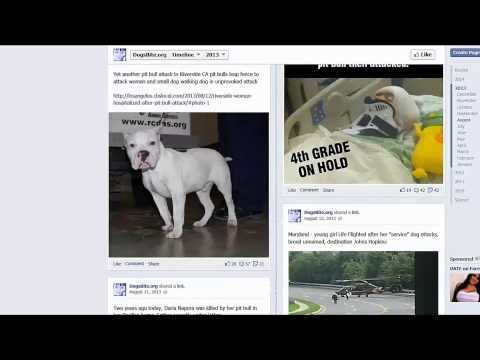 dogsbite.org - Use of a year of Facebook posts thumbnail