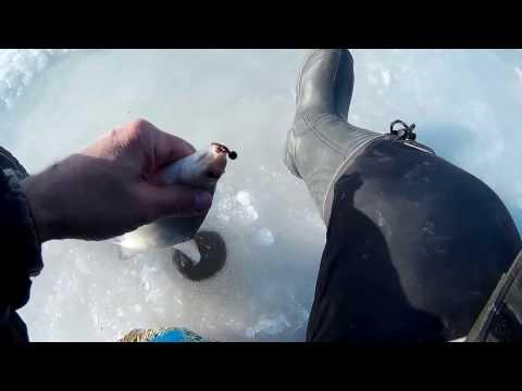 КЛЁВАЯ ЛУНКА-8КГ. Или закрытие зимнего сезона. Зимняя рыбалка-2017!