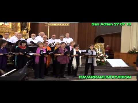 SAN ADRIAN CONCIERTO CON LAS VOCES DE SAN ADRIAN DE BESOS   27 07 13