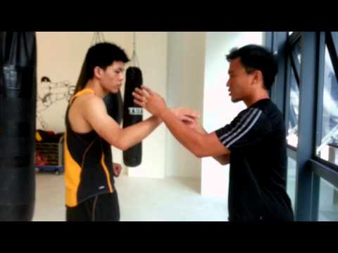 Hung Gar Kung Fu : Qin Ji Jeong(Thousand Word Hands) 洪拳 : 千字掌