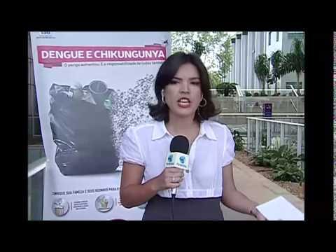 Ministério da Saúde lança a campanha de prevenção à dengue e à febre Chikungunya