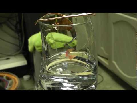 What Is A Catalyst? Demo Of A Copper Catalyst & Acetone