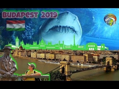 Budapešť 2019
