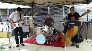 The Haskell's 50-60's Rock & Roll Band @ Humane Society of Branch County, Mi.