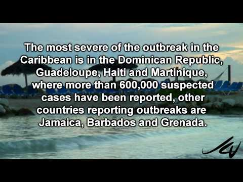 Caribbean Travel Alert 2014 2015 -  Chikungunya Virus Outbreak  -  YouTube
