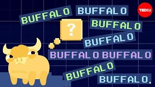 Buffalo buffalo buffalo: One-word sentences and how they work - Emma Bryce