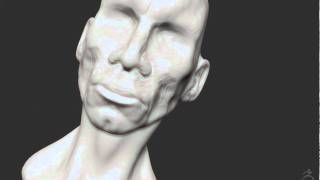 Generic head speed sculpt zbrush.MOV