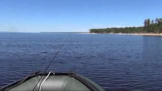 охота и рыбалка зейский район