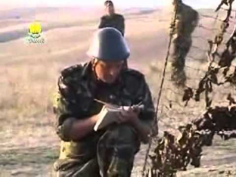 Romanian artillery / Artileria romana