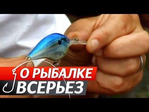 Окуневая Рыбалка. Подготовка.