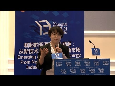 "[2013 Shanghai Forum] WU Libo ""Strengthening the Demand of  Renewable Energy in Asia"""
