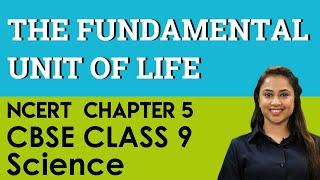 CBSE (NCERT) Class 9 (IX) Biology Chapter 5 Fundamental unit of life