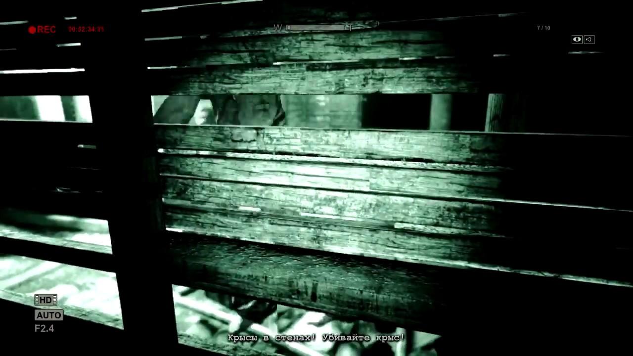Фото отрезанных членов с яйцами 3 фотография