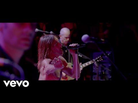 Iggy Pop Break Into Your Heart music videos 2016