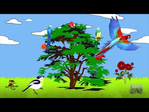 Lullaby (Bird Tree) - Muffin Songs | nursery rhymes & children songs with lyrics