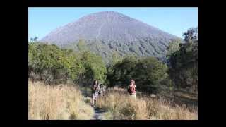 "road to semeru ""5 KM """