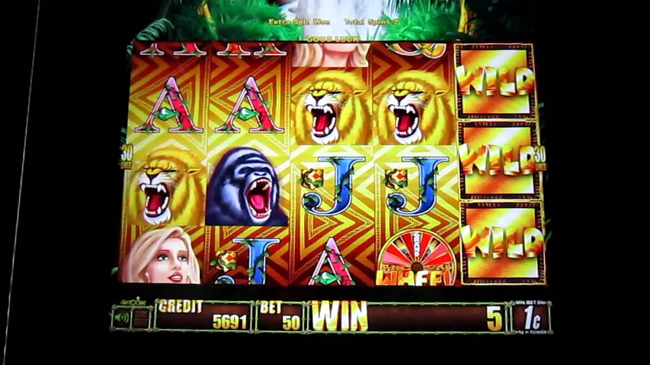 wild online casino bonus codes