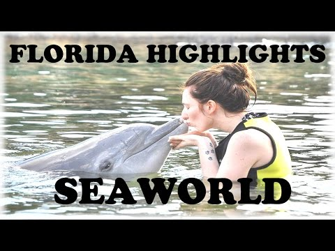 2015 WORLD DISNEY PROPOSAL VLOG - PART3 - SEAWORLD