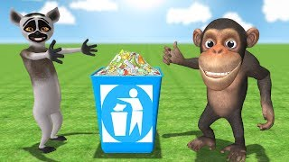 Funny Monkey taught lemur to throw garbage in the trash can