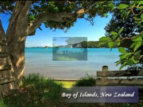 The Bay For Sale - Prime Property in New Zealand