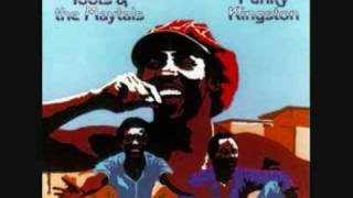 Watch Toots  The Maytals Time Tough video