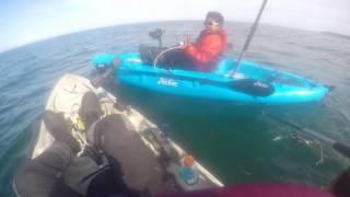 Ryu's 45 pound Halibut using a Kiddie Pole off a kayak!