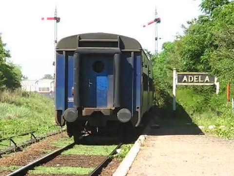 Canje de aro en Estacion Adela.